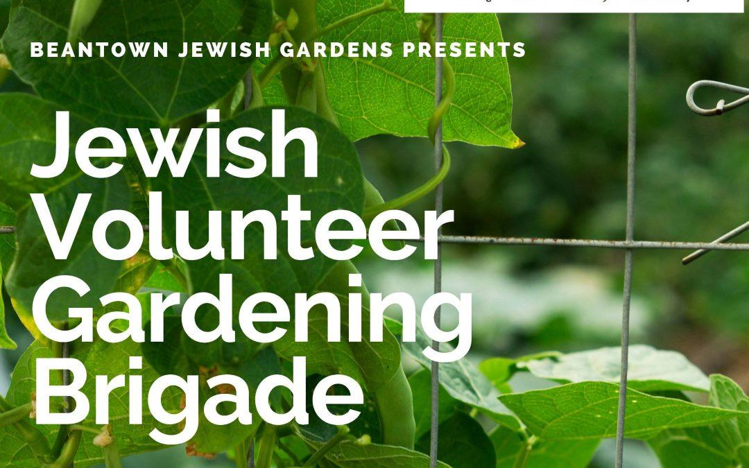 Jewish Volunteer Gardening Brigade